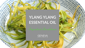 ingredient breakdown ylang ylang oil