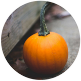 pumpkin for skin care