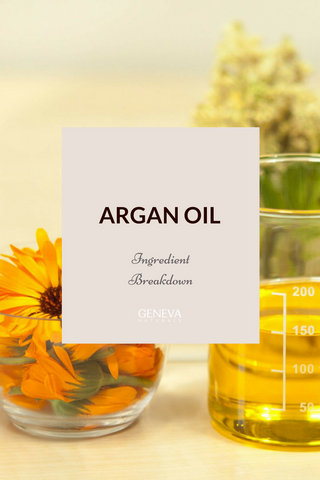 Everything you ever wanted to know about Argan Oil- Geneva Naturals