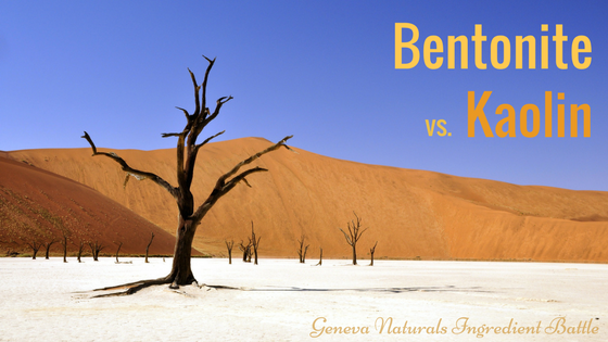 bentonite v kaolin