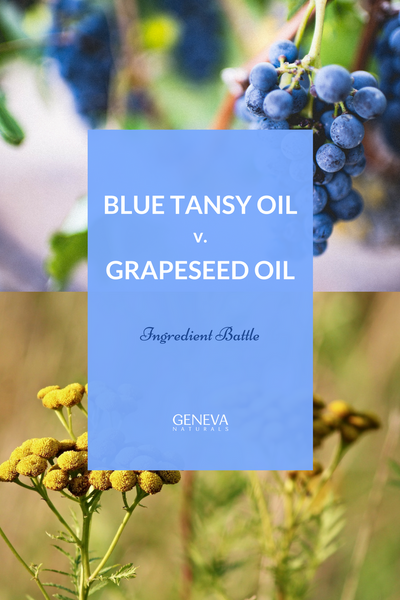 grapeseed oil and blue tansy oil