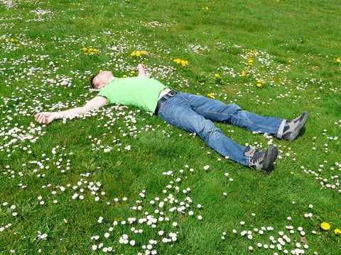 man sleeping in field of flowers