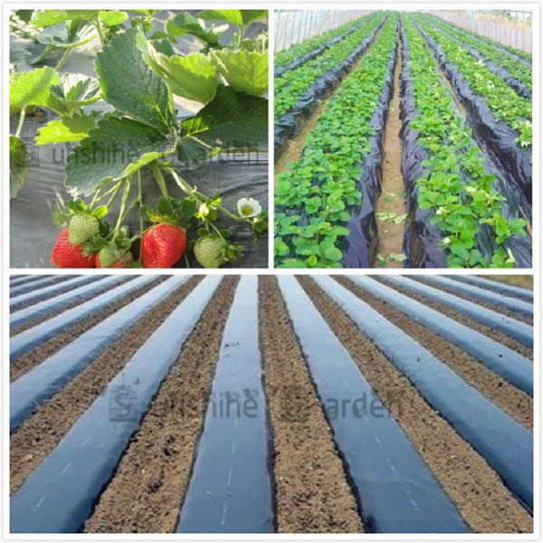 Black Agricultural Shade Film 1x50Meters Strawberry PE Film Garden Flower Greenhouse Plastic Mulch Film 0.01mm Thickness