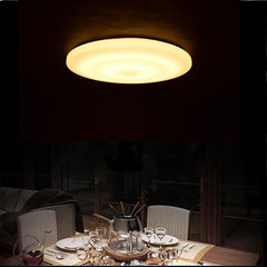 modern ceiling lamps contracted circular 33CM LED indoor lighting acrylic ultra-thin Restaurant shop kitchen bathroom decoration