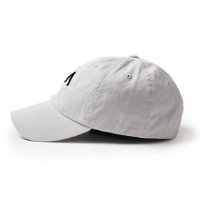 Dad Hat in Lt. Grey
