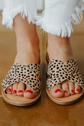 *NEW* Lunacy Flat Sandals ~ Cheetah