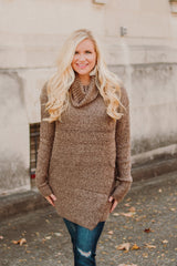 Tori Turtle Neck Tunic/ Dress