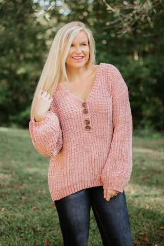 POL Evelyn Urban Chenille Knit Sweater ~ Terra Cotta