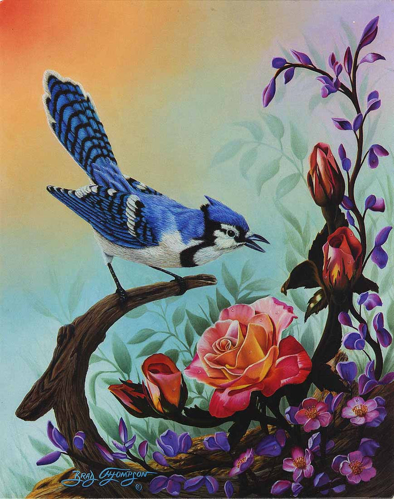 Blue Jay with Helen Trauebel