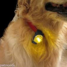 SportDOG SDLB-YELLOW Locator Beacon Yellow