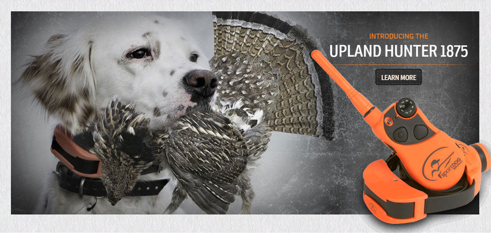 SportDOG Upland Hunter 1875