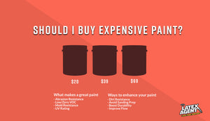 Should I Buy Expensive Paint? A Paint Buyer's Guide