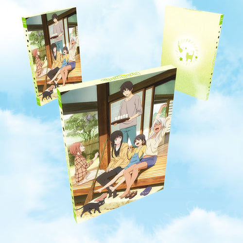 Flying Witch Premium Box Set Extras Box