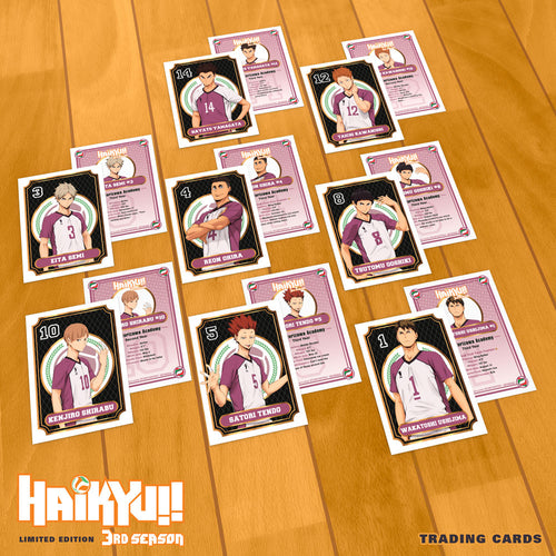 Haikyu!! Season 3 Premium Box Set Trading Cards