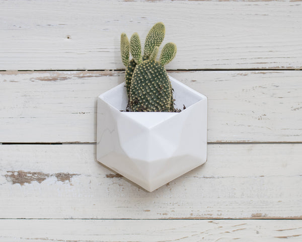 Geometric Wall Planter White - Clarke Collective - 1