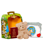 Bear In A Box by Teddy Mountain - Brown Patches Bear