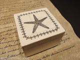 Nice Antique Style, Star Fish Scrimshaw Bone Wood Trinket Box - Early Home Decor