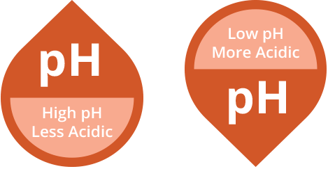 Just the pHacts: pH and acidity in coffee