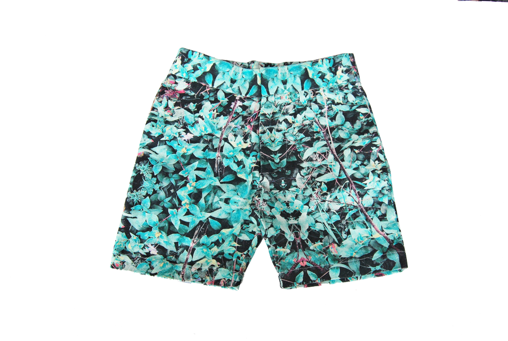 chino short- Field Mint