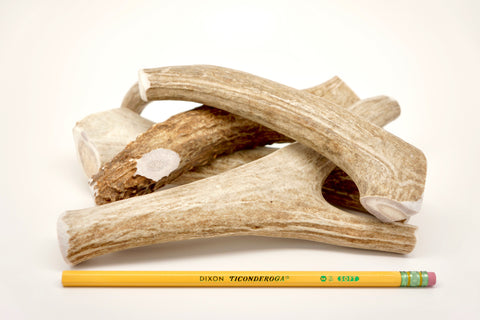 large deer antlers by the pound