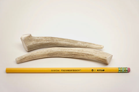 Petite Deer Antler - Two Piece