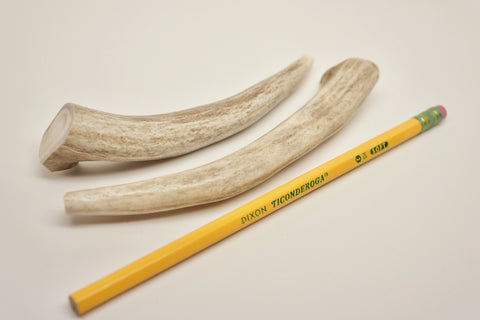 Small Deer Antler - Two Piece
