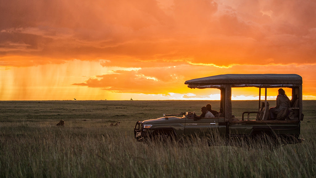 Have Bikini. Will Travel: What makes a good safari camp?