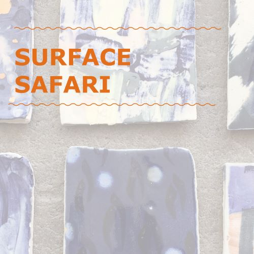 FOUR Week Intensive: Surface Safari Course