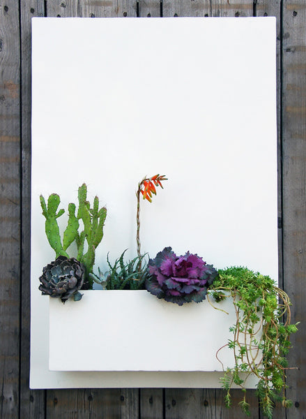 "Sucker for Succulents Planter (20""w x 30""H)"
