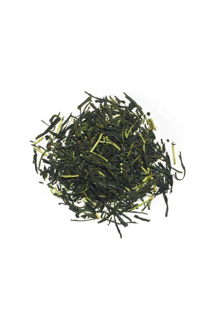 Makijima Tea Co x Provider – Sencha Green Tea