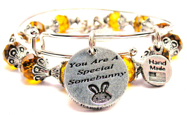 You Are A Special Somebunny 2 Piece Collection