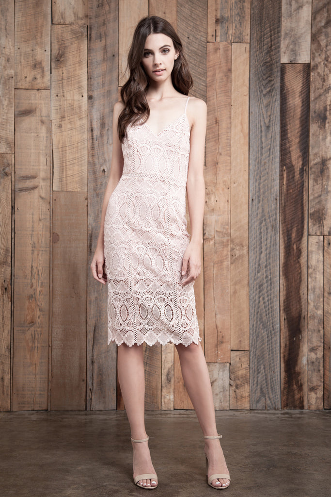 LACE MIX FITTED DRESS