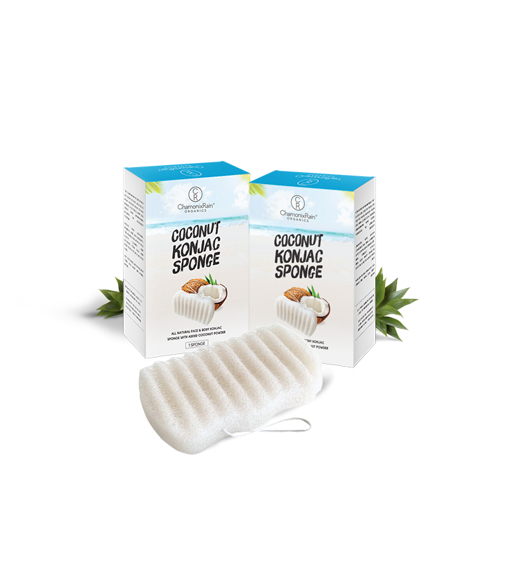 Wave Sponge Coconut Konjac Sponge Set