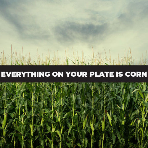 Everything on Your Plate Is Corn | History, Disease & Pesticides