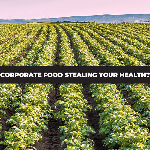 It's Not Your Fault: Corporate Food Is Slowly Stealing Your Health