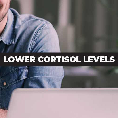 Cortisol and Testosterone: 20 Ways To Reduce Your Cortisol Levels Naturally