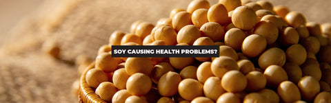 Soy Is Causing Fertility and Sexual Health Problems for Americans