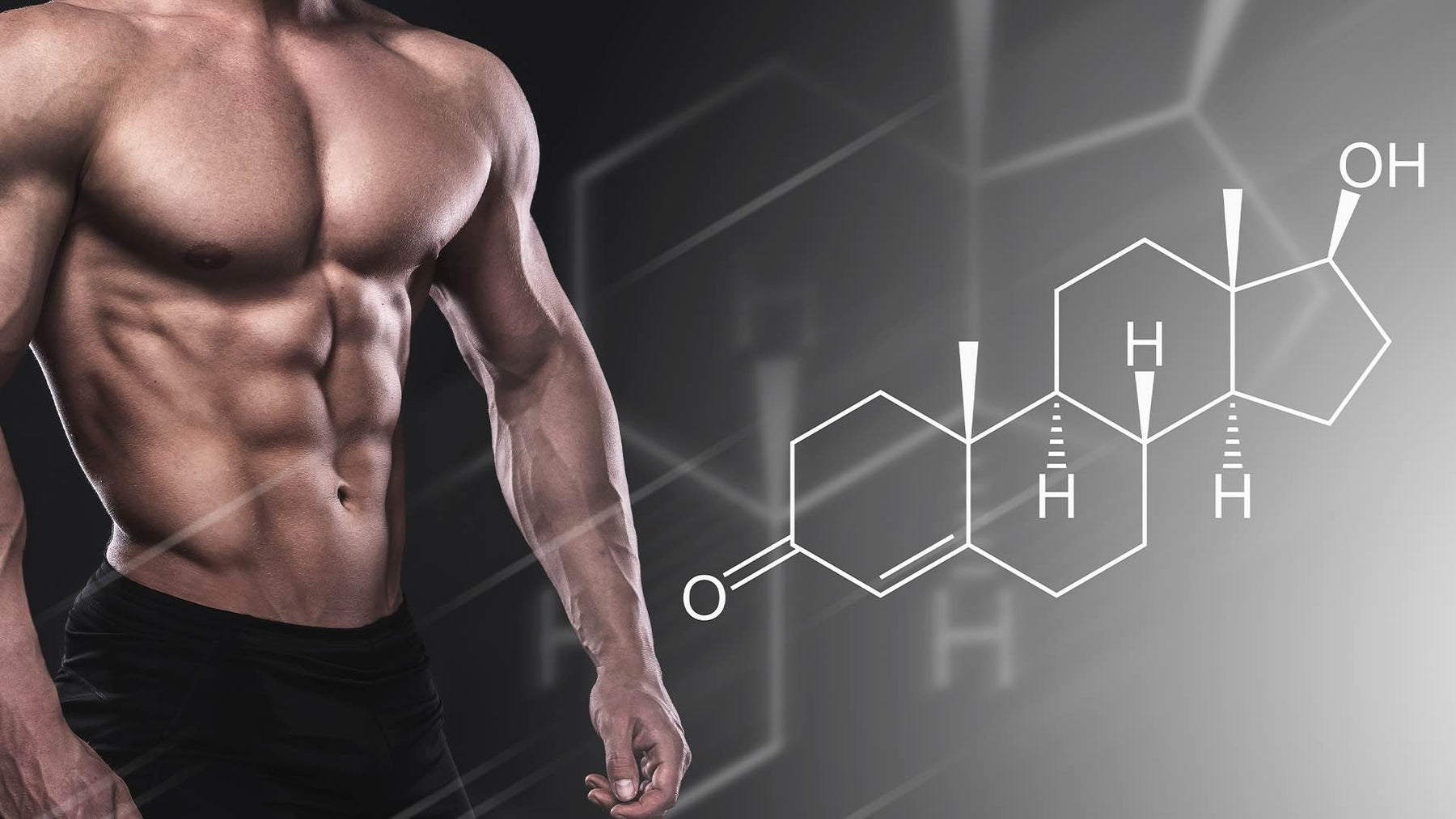 The Definitive Guide To Testosterone Boosting Supplements
