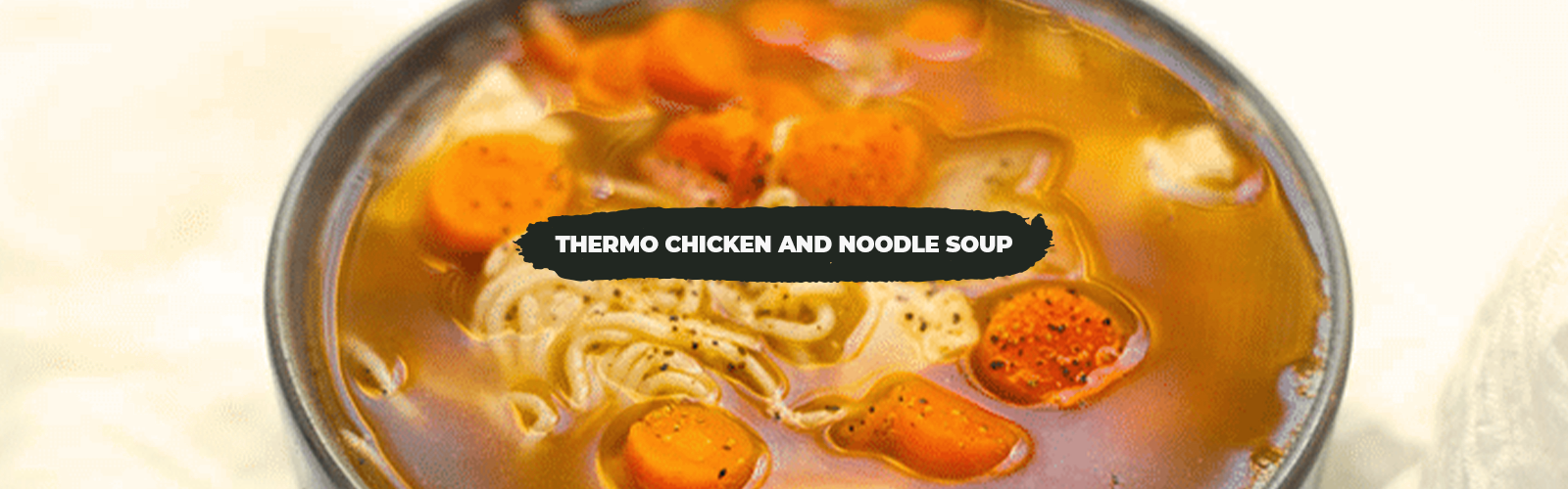 Thermo Chicken and Noodle Soup