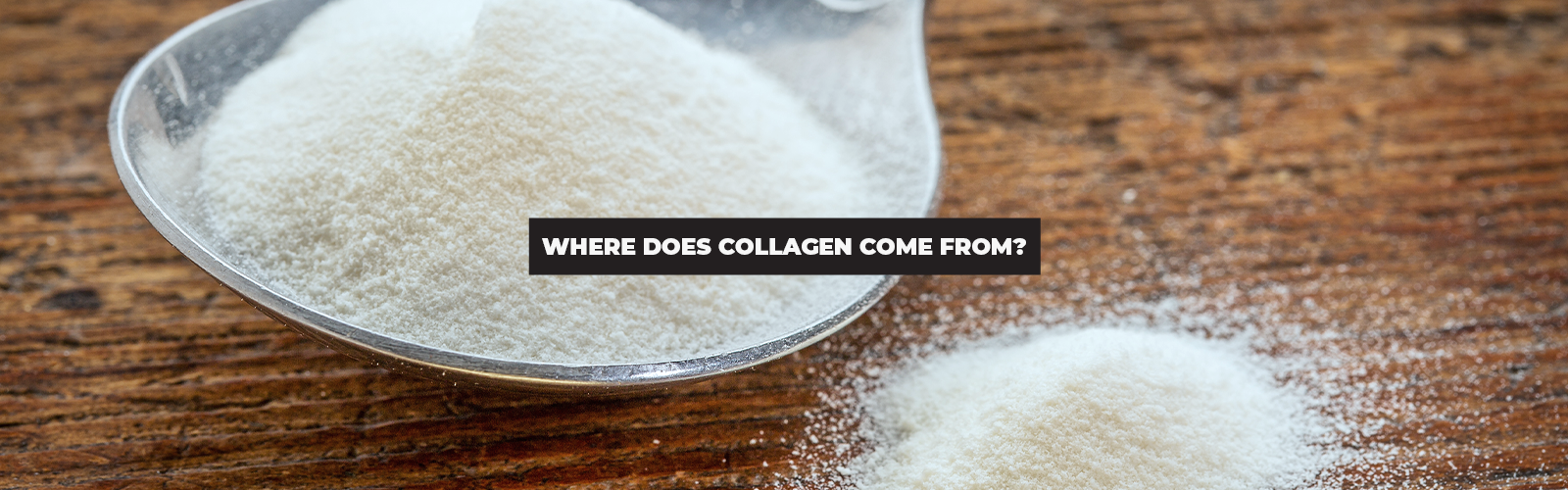 Where Does Collagen Come From? How Is It Made in the Body?