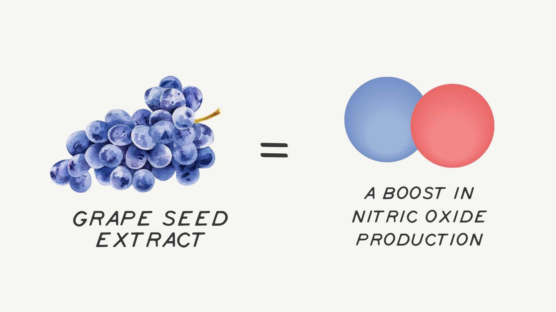 GRape seed extract and blood flow