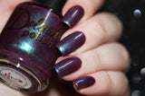 Master of Wine - Delush Polish - 12