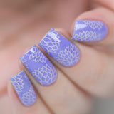 Enchanted - DP01 Nail Stamping Plate - Delush Polish - 2
