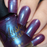 Master of Wine - Delush Polish - 14