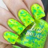 Cheers Comes the Sun - Delush Polish - 1