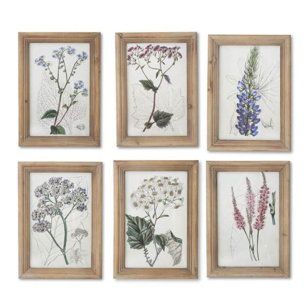 Set of 6 Botanical Prints