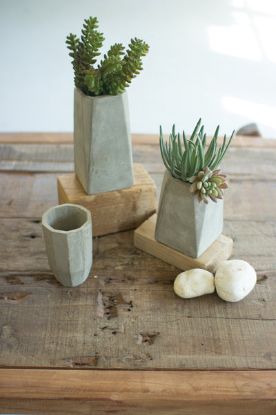 Concrete bud vases (sold separately)