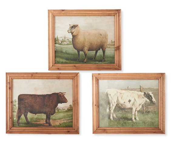 The Johnson Collection of Framed Prints