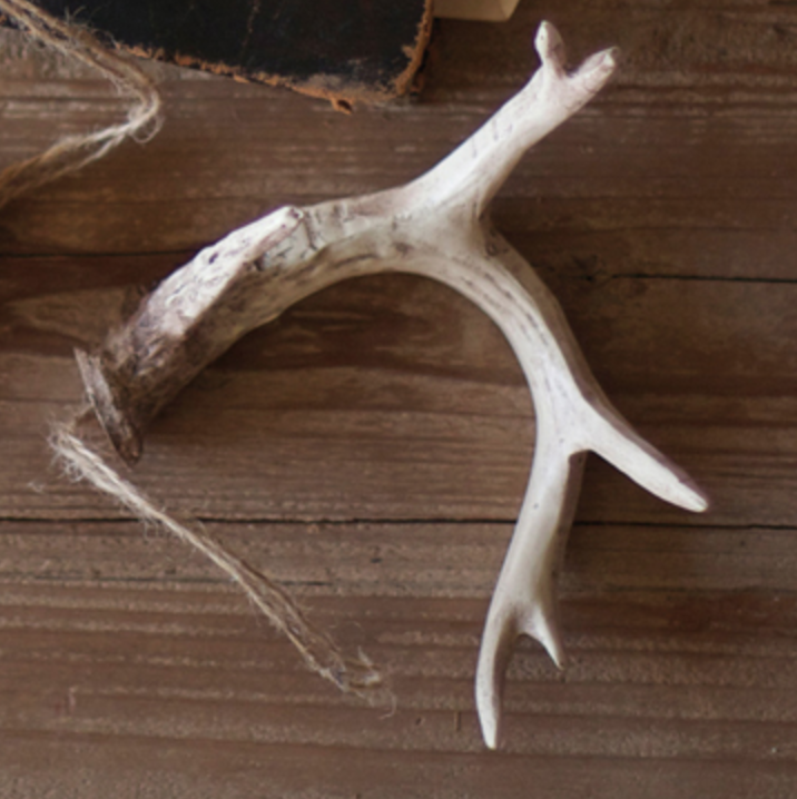 Set of 6 Antler Ornament (variety of colors)