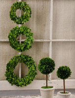 The Laura Mini Boxwood Wreaths (sold separately)